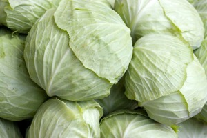 0614_cabbage011